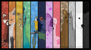 Animals of COLOR