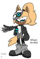 Whisper the Wolf: Sonic IDW by FrostTheHobidon