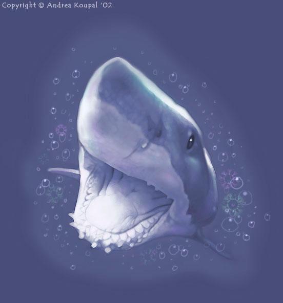 sharkbite by andrea-koupal