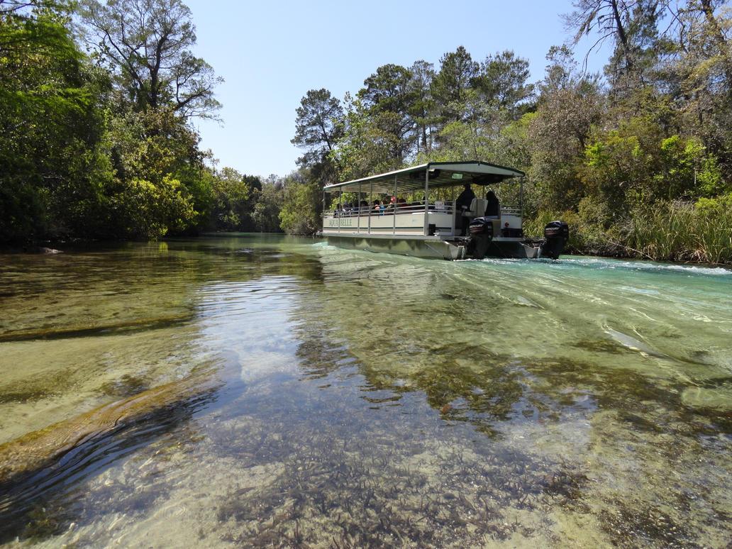 Weeki Wachee River by Zoruaofepic