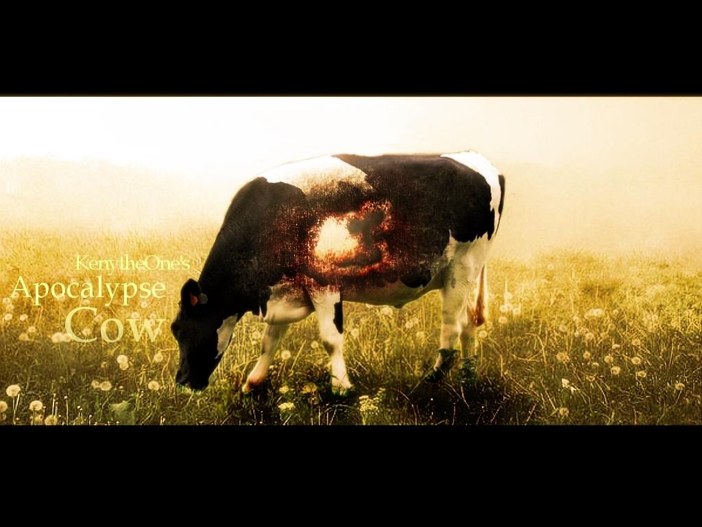 cow apocalypse