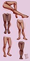 Legs study