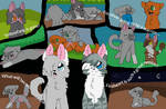You are Cinderpelt!