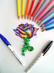 Colorful world - rose by EmilyArtPoland