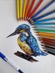 Bird ^^