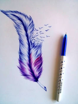 Feather wip