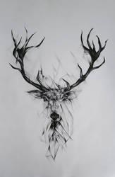 Black And White Deer by EmilyArtPoland