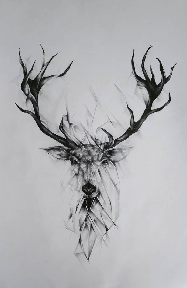 Black And White Deer