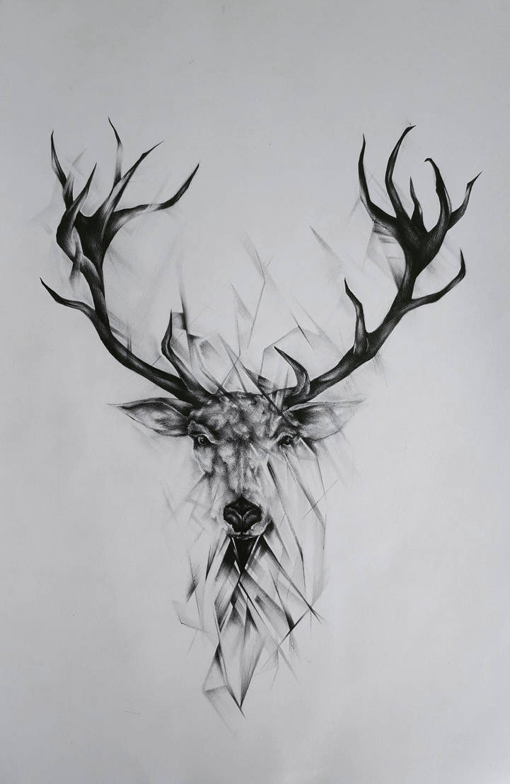 Black And White Deer by EmilyArtPoland
