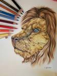 Lion - my first art in 2019 by EmilyArtPoland