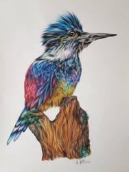 Colorful birdie by EmilyArtPoland