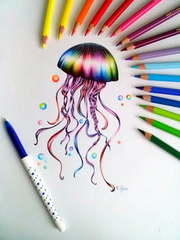 First drawing of jellyfish