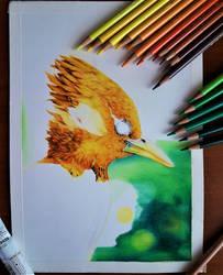 Bird wip
