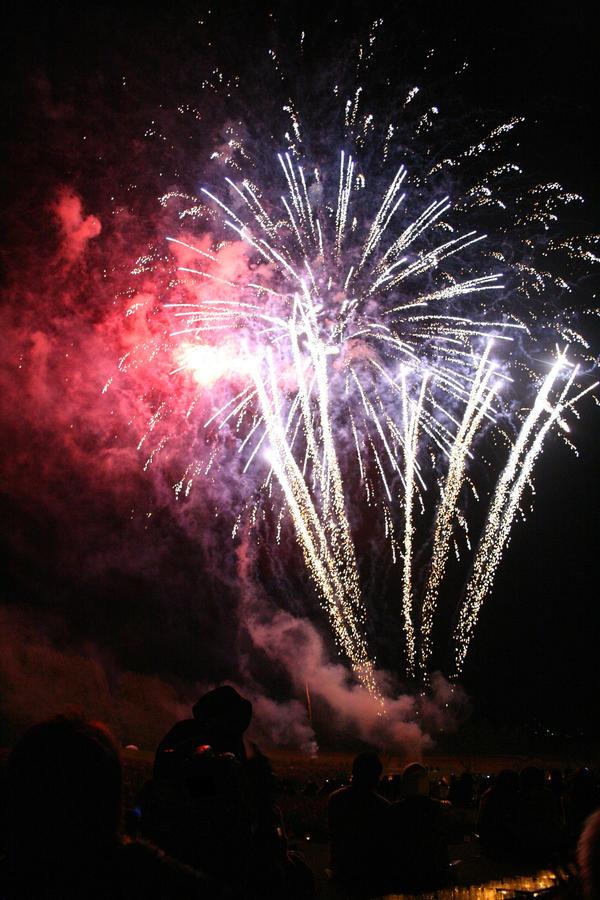 Night Cosmos Fireworks 2014 - 01 by caffinefreek