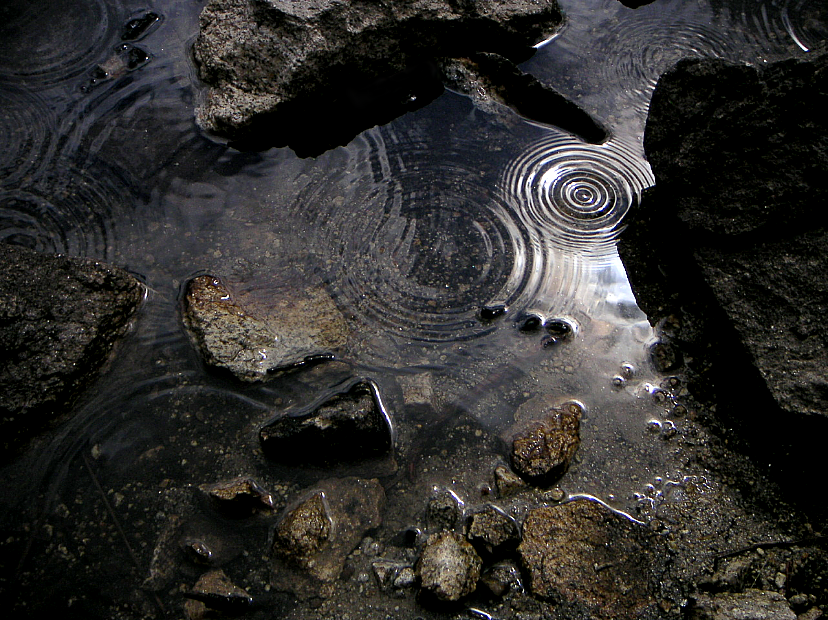 Rain Drops - 03 by caffinefreek