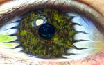 Alien Forest Eye