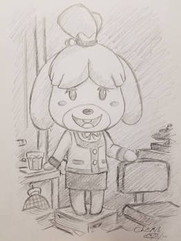Isabelle Sketch Study
