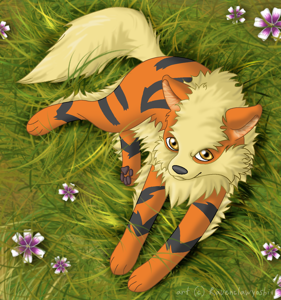 My Elite - Arcanine by ravenclawyoshi