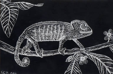 Scratchboard Study: Reptiles by ravenclawyoshi