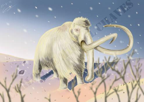 Frosty, the snow-proboscidean