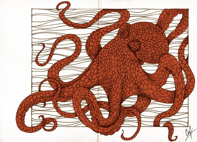 Octopus by LiaBatman