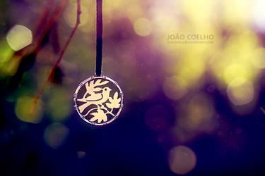 equinox by sumarlegur