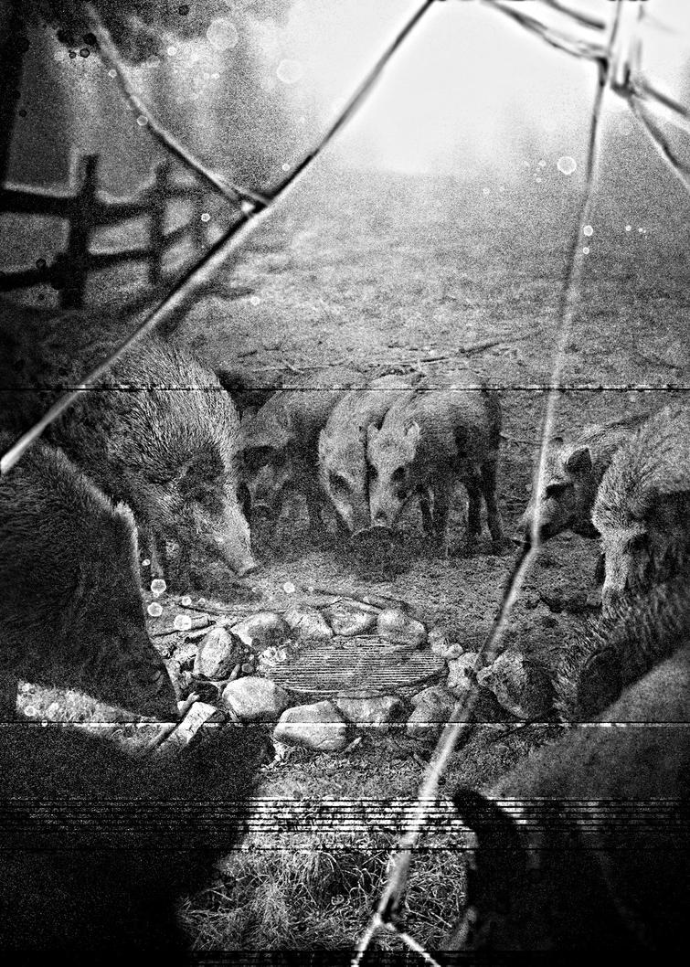 Mourning Boars (13th House) by cowboypunk