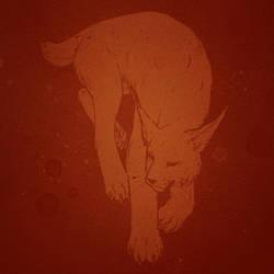 more lynx