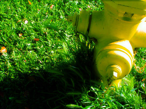 The Best Hydrant Ever 1