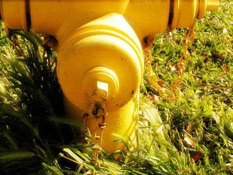 The Best Hydrant Ever 2