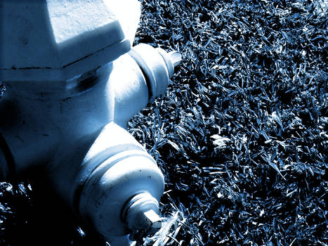 The Best Hydrant Ever 5