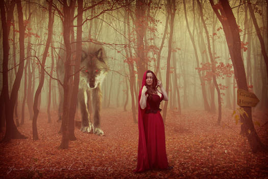 Red and the Wolf Original