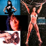 The INCREDIBLE And UNFORGETTABLE Chyna