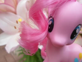 Pinkie Pie by MidnightRarity