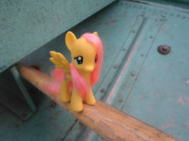 Fluttershy on a boat at Chicago by MidnightRarity
