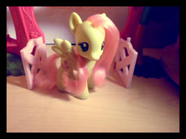 Keep on being cute Fluttershy! by MidnightRarity