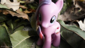 Cupcake -Fall 2014 by MidnightRarity