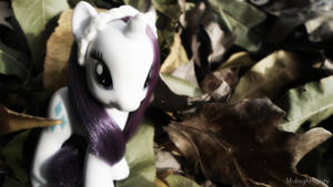 Rarity -Fall 2014 by MidnightRarity