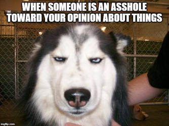 When Someone is An Asshole toward Your Opinion by Jonathan432