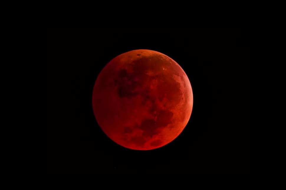 Red Moon! by UNDEADWARRIOR7411