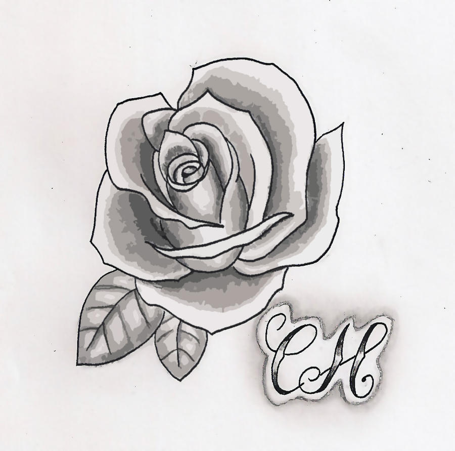 Rose Black And White By Hausofch On Deviantart