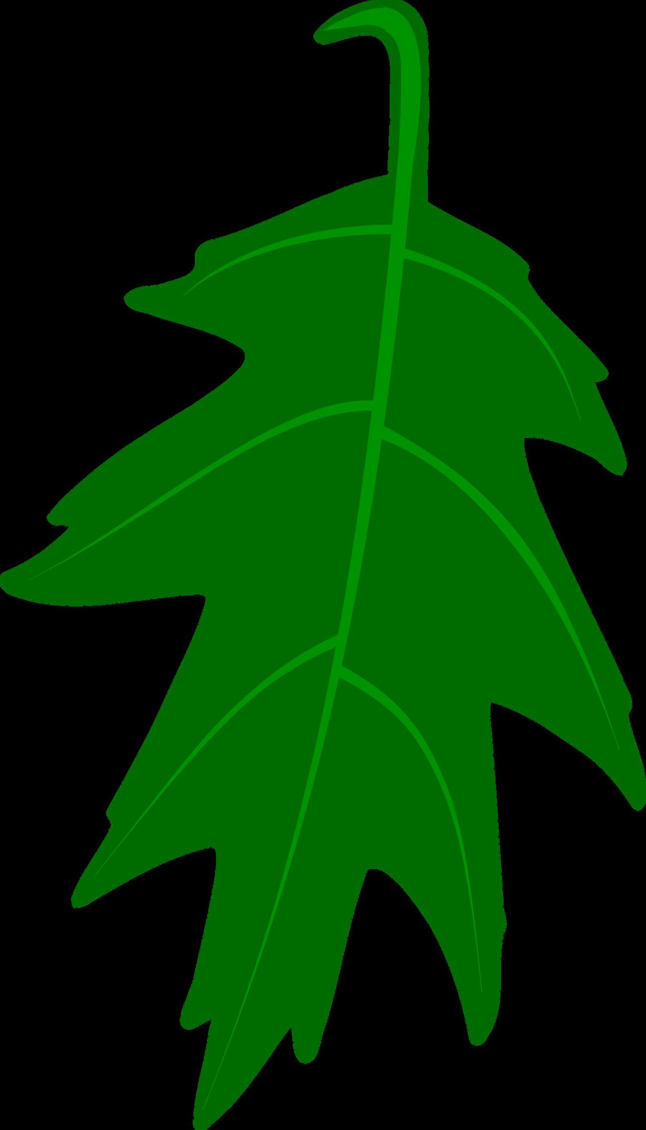 Oak Leaf Vector by Mortris on DeviantArt