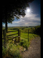 Wiltshire Vista II by GMCPhotographics