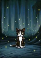 A Kit... by sarahrubycat