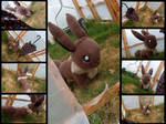Commission: Eevee life size