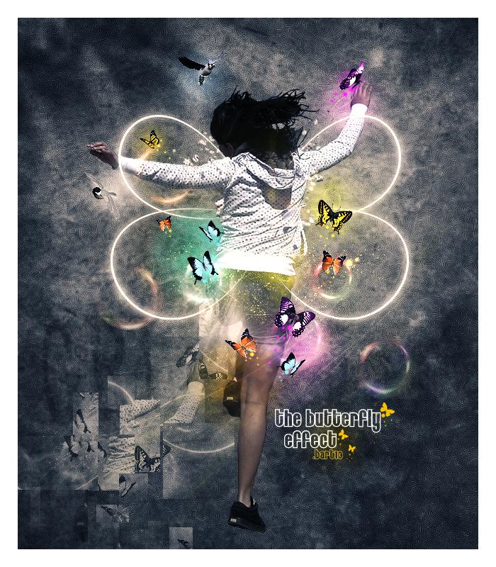 the butterfly effect by BARTIK13