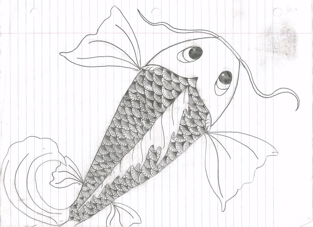 japanese koi fish drawing