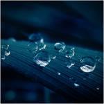 Winter Blue Drops