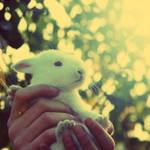 Bunny II by CasheeFoo