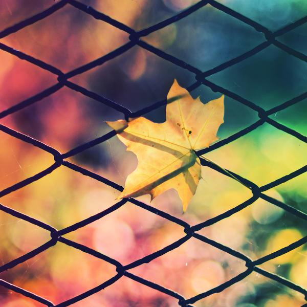 rainbow by CasheeFoo